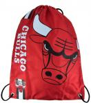 CROPPED LOGO GYM BAG BULLS