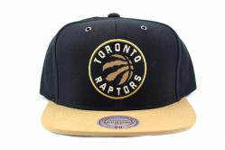 SWIFT SNAPBACK TORONTO RAPTORS